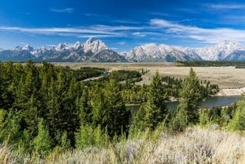 Wyoming Adoption Requirements: Complete Guide